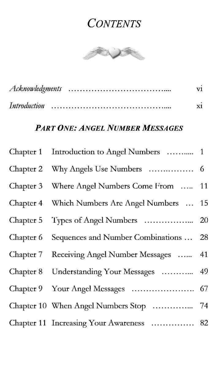 Angel Numbers Mastery ~ Angel Numbers Book ~ Sarahdawn Tunis